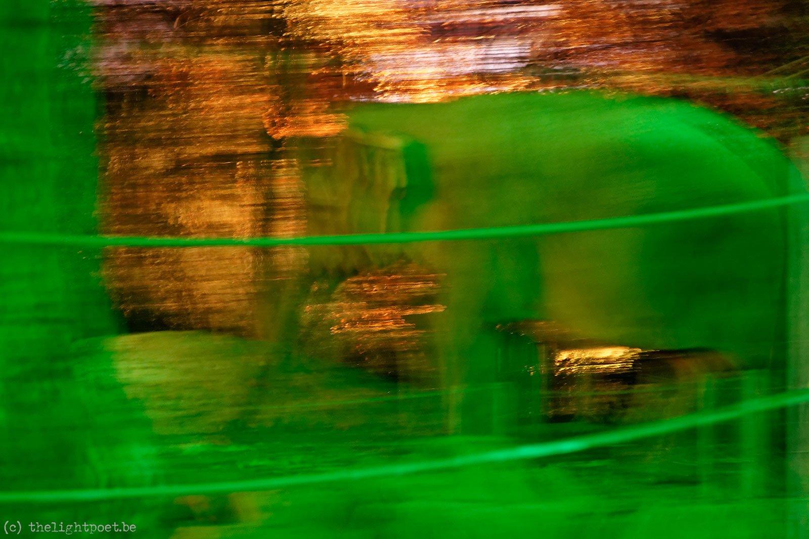 2011_10_zoo_20111031_205526_dxo