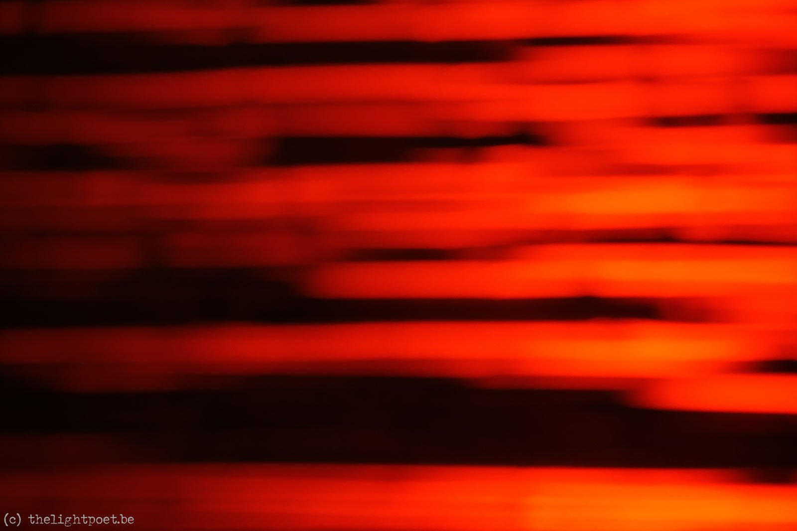 2011_10_zoo_20111031_211521_dxo
