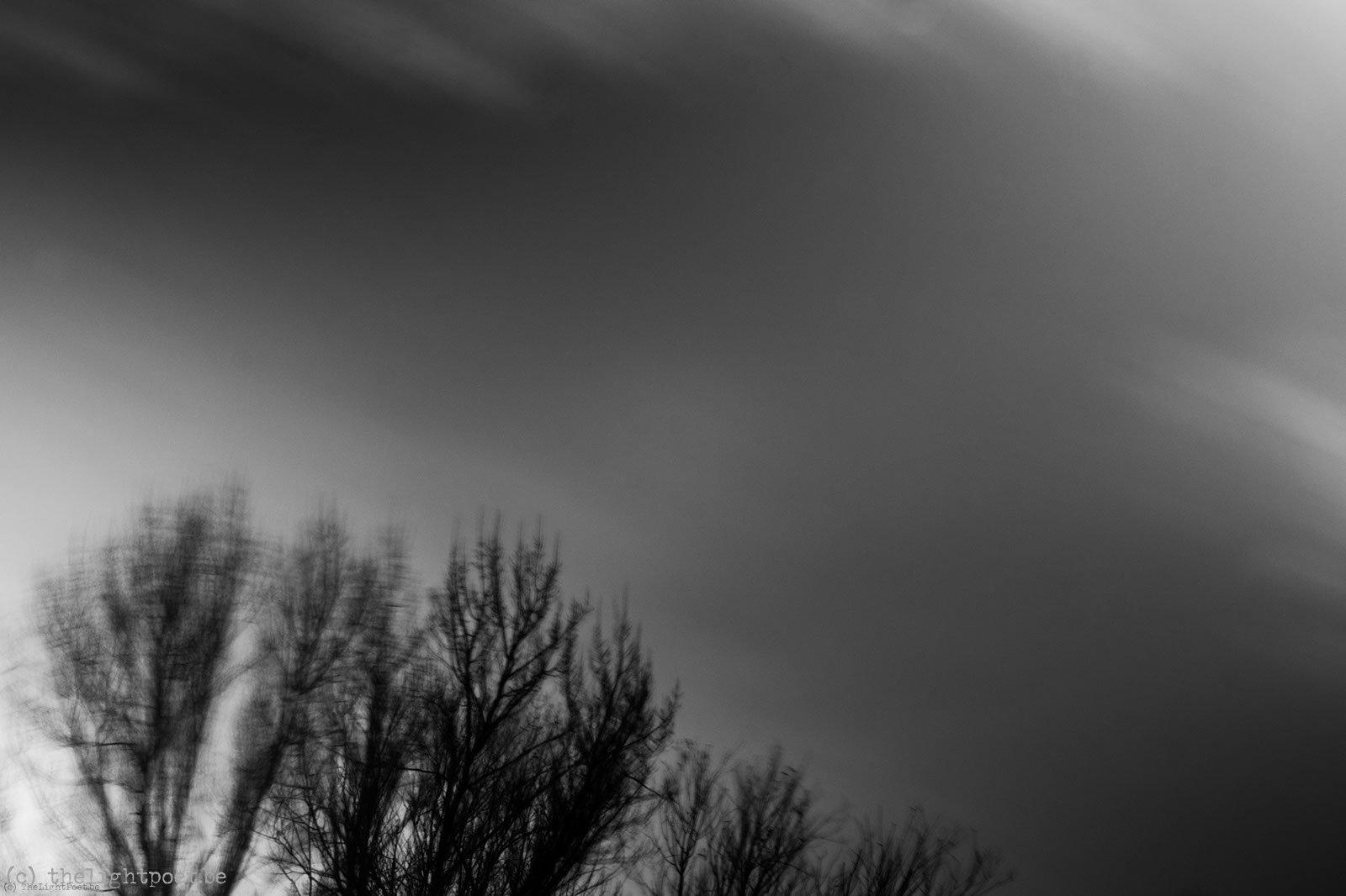 2012_11_storm_20121125_095543_dxo_v8