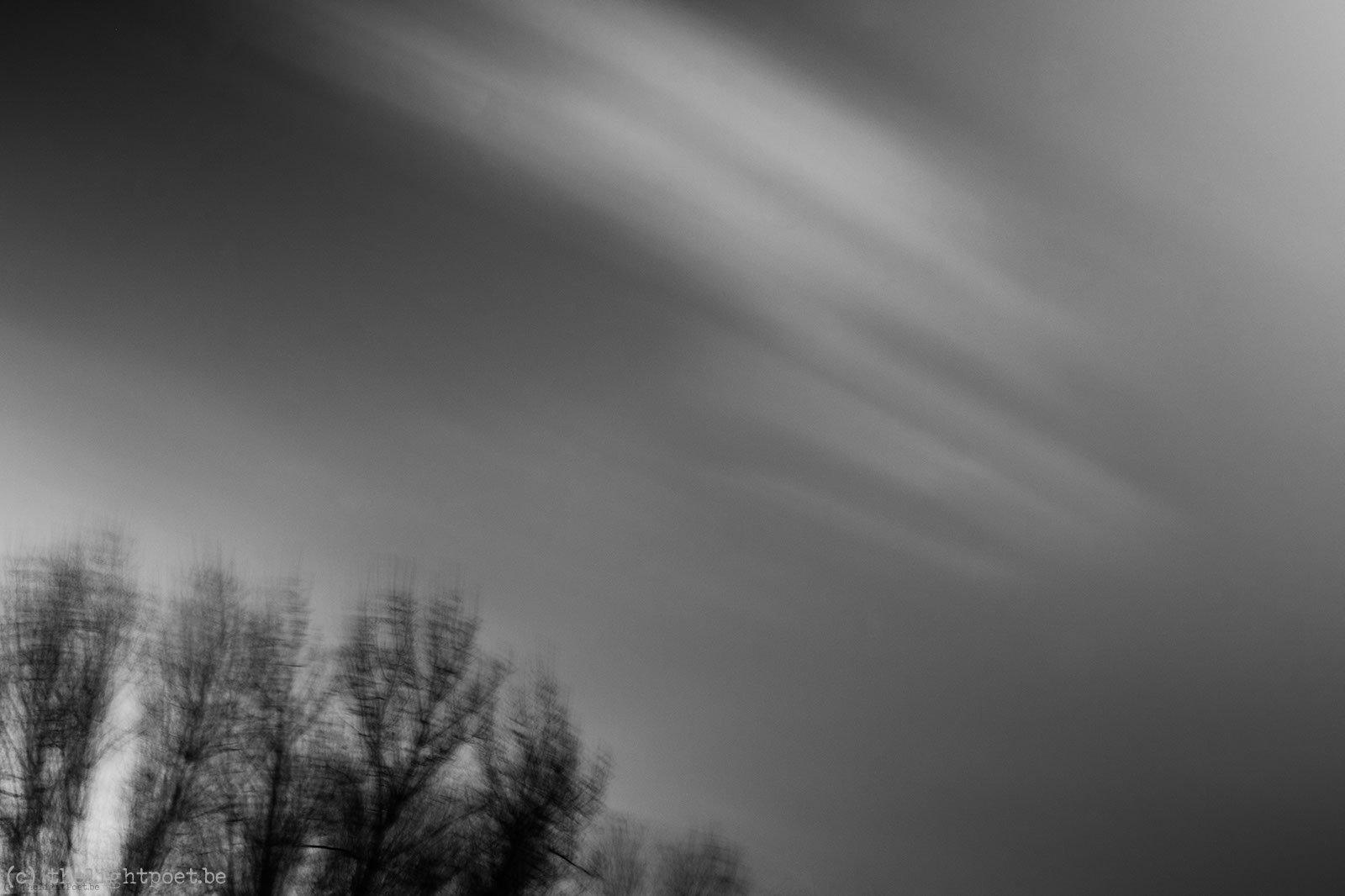 2012_11_storm_20121125_095617_dxo_v8