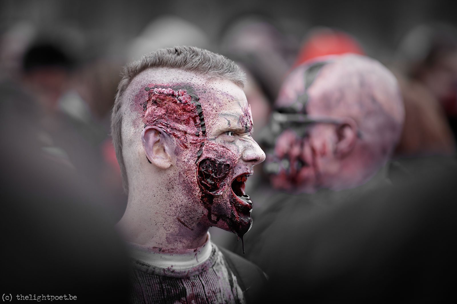 2013_04_zombieparade20130406_154003_dxo_v8
