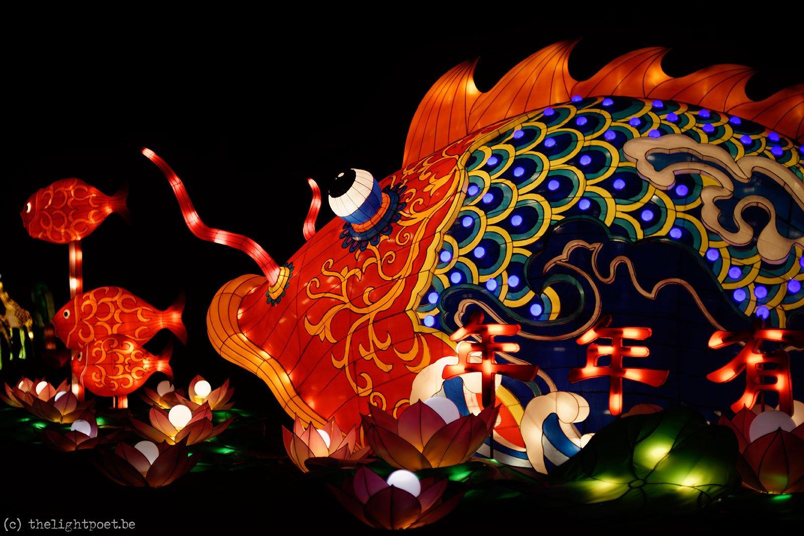 2014_12_ChinaLight_20141206_204737_DxO_v10