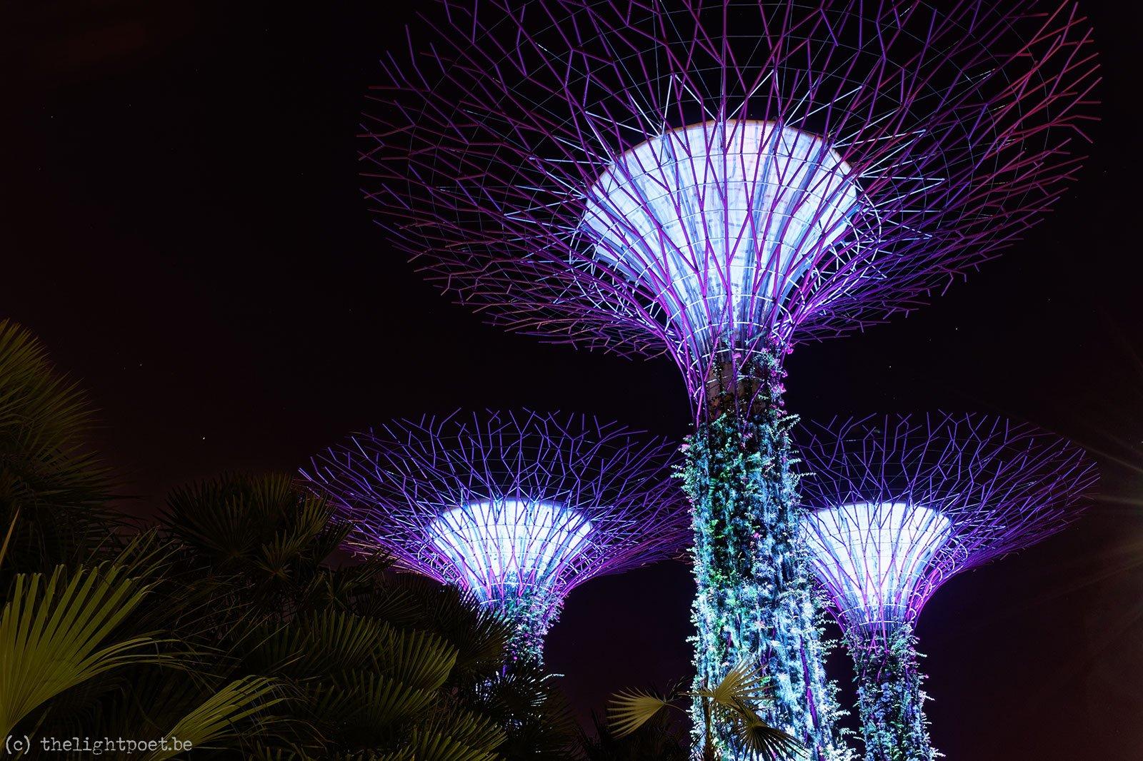 2016_01_Singapore_20160127_135406_DxO_v10