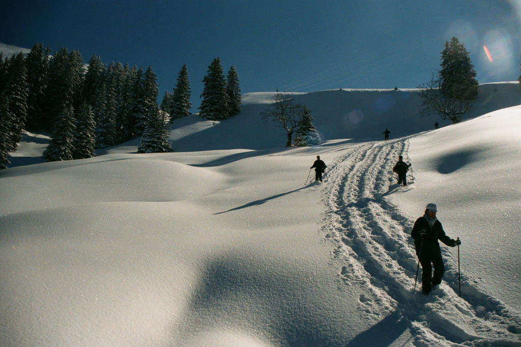 Snow shoes, Les Pléaides, March 2001